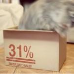 パッケージを変えたら売上31%増!競合商品が多数でも売る方法